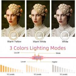 TikTok YouTube Canlı Yayın Aynalı Makyaj Lambası Ring Light